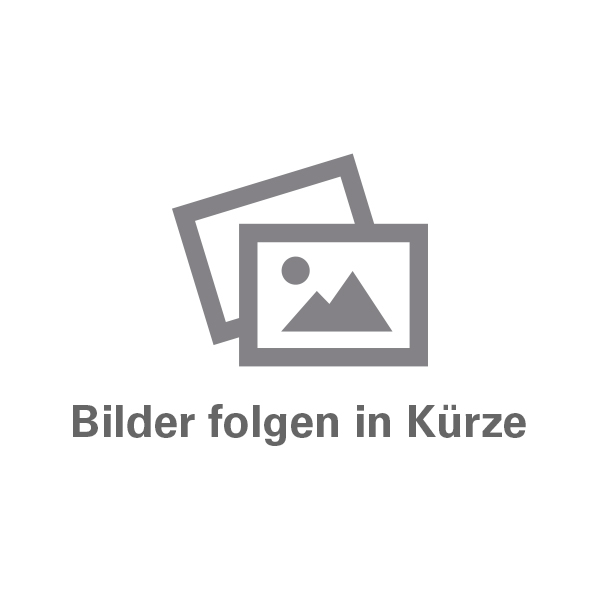 BENZ-PROFESSIONAL-Isoliergrund-1