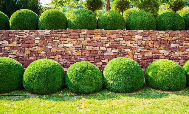 Ästhetische Gartenmauern