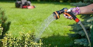 Brausen & Spritzen Gartenbewässerung
